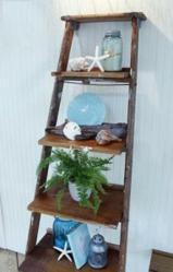 Vintage Library Ladder Leaning Shelf From Sterling Industries