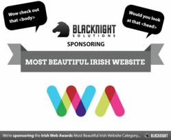 Irish Web Awards 2012