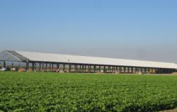 Conergy purpose-built solar structure under construction at T&P Farms