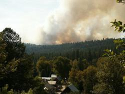 MyLandPlan can help you wildfire-proof your woods.