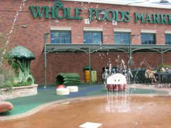 Whole Foods Market in Boulder CO PLAYTIME Soft Play Area Photo