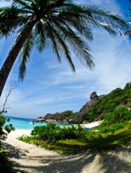 Donald Duck Bay at the Similan Island 8