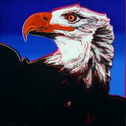 Bald Eagle Painting by Andy Warhol