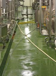 Rembrandt Food Flowcrete HF 10,000 Square Foot Flooring Installation