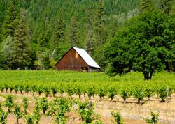 Alpen Cellars is located in Trinity Center, Calif.
