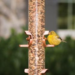 Perky-Pet Design-A-Feeder Bird Feeder