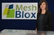 MeshBlox reception