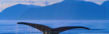 N-Motion Auto Transport Now Offers Alaska Auto Transport Services