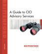 Brittenford Guide to CIO Advisory Services