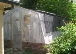 Turner Greenhouses Biltmore Model