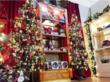Christmas tree shop at Treetime Christmas Creations