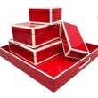 Lacquer Boxes and Trays available at MyTallulah.com