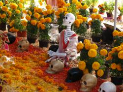 <img src=&quot;LA California Flower Mall Dia de Los Muertos Day of the Dead marigold flowers &quot; alt=&quot; &quot; />