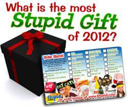 The Most Stupid Christmas Gift of 2012