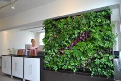 Gsky plant systems inc exhibits at greenbuild for Green wall vancouver