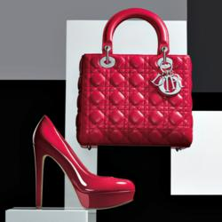 Dior Shoe and Handbag, Americana Manhasset Holiday Book