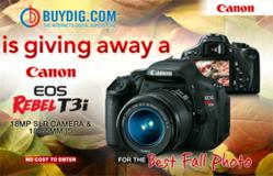 BuyDig Themes of Fall Photography Contest