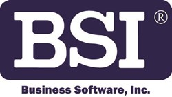 Business Software, Inc. (BSI)