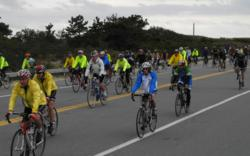 Cyclists in Buzzard's Bay Watershed Ride