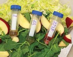 Food Chemistry @ ScienceIndex.com