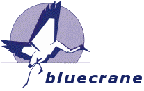 Bluecrane Management Consulting