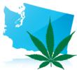 The Passing of Washington's Initiative 502  - A Defense Attorney's Perspective on the Law's Marijuana Decriminalization