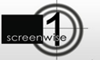 Private Acting Lessons Now Available At Screenwise In Sydney
