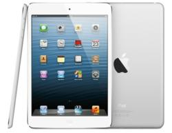 Apple's iPad mini Works Beautifully with IXACT Contact's Real Estate CRM