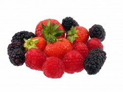 Raspberry Ketone Free | Ketone Raspberry