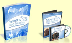 Secrets to Dog Training by Daniel Stevens