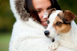 Preventing Mange in Dogs