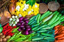 Raw Vegan Diet | Raw Food Diet