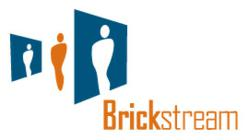 Brickstream: Get the Real Point of View