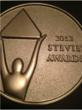 The 9th Annual Stevie Awards