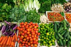 Organic Farm | Organic Food