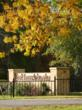 The East Texas Arboretum & Botanical Society is just one of the stops along the Scenic Fall Foliage Trail.