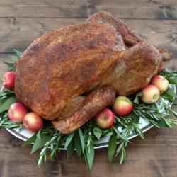 Photo: BN RANCH Free-Range Turkey