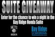 Bay Ridge Honda Sponsors Barclays Tickets For Nets Games Bringing Brooklyn Back To Roots