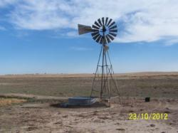 Colorado CRP land, Colorado CRP land for sale, Colorado CRP land auction, Colorado farmland for sale, Colorado farmland auction, Kit Carson County CRP land for sale, Kit Carson County CRP land auction, Kit Carson County CRP land