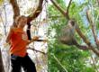 Kid monkeys around, left, for YouTube entry to South African safari contest; right, a real South African vervet monkey © Africa Adventure Consultants