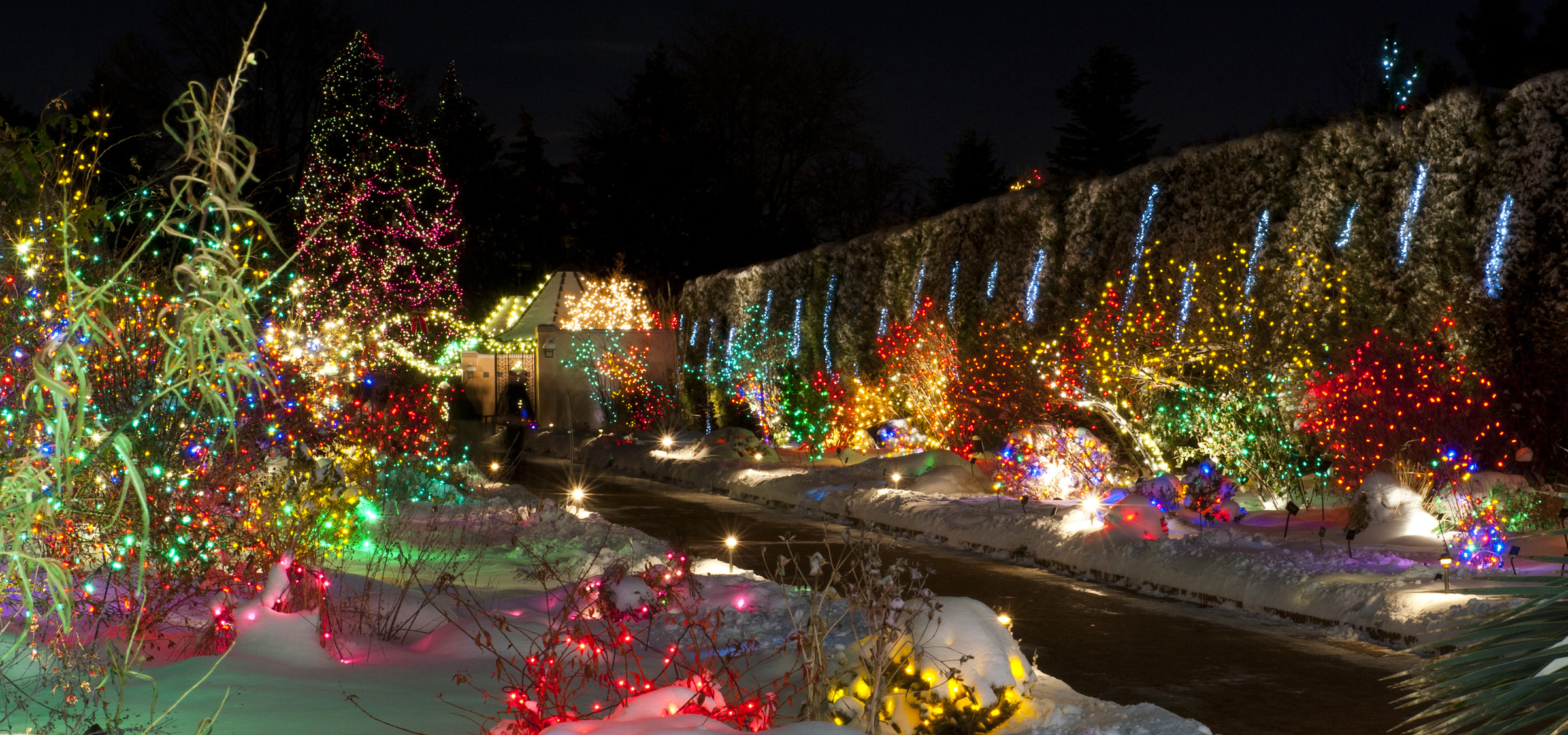 Swingle Shares Best Places To View Christmas Lights In