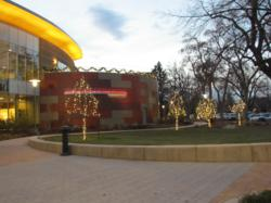 Commercial Christmas Lights - Fort Collins, Colorado