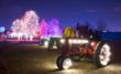 Professional outdoor Christmas lights - Denver Botanic Gardens at Chatfield