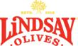 """Lindsay Olives Gives Back this Holiday with """"Season of Hope"""" Campaign"""