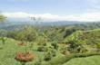 Orchid Point Estates Development Costa Rica