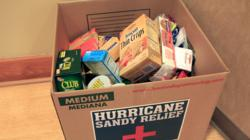 SoftRock Inc. Hurricane Sandy Relief