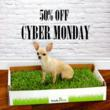 Cyber Monday For The Dogs: Fresh Patch Real-Grass Dog Potty Will Be...