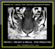ipredator-dr.-michael-nuccitelli-dark-psychology