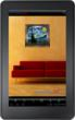 overstockArt.com released a Kindle Fire-optimized version of its free mobile application in November 2012.