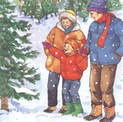 Selecting the perfect family Christmas tree takes careful selection and good daily care says Giroud Tree and Lawn